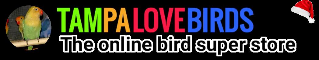 TampaLovebirds
