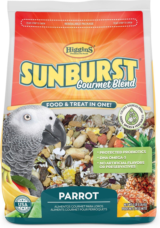 parrot foods